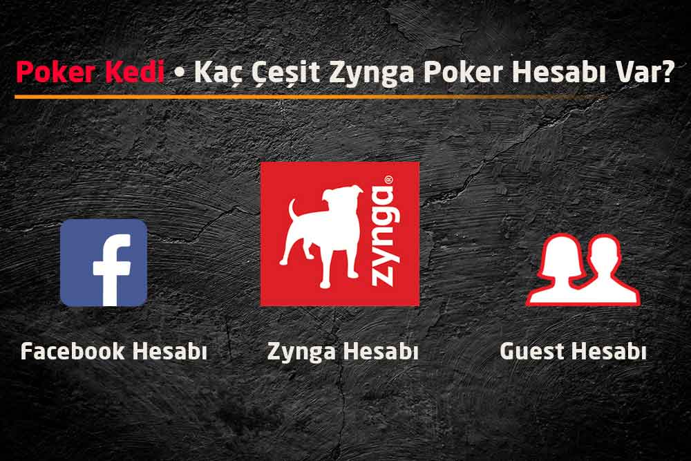 Zynga Poker Account Types